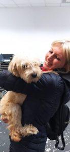 Toto, animal adoption, sspca, seychelles animal rescue, seychelles animal shelter