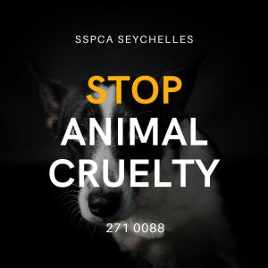 stop animal cruelty, prevent animal cruelty, seychelles spca, sspca seychelles, sspca,